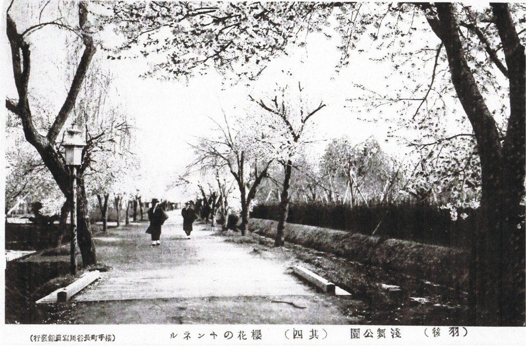 106_15_【15】桜花のトンネル